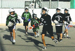 Glendale Box Lacrosse U11 Division, Fall 2007